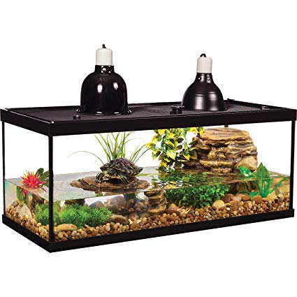 Best Filter For a 55 Gallon Turtle Tank